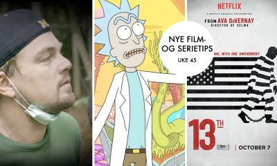 UKENS ANBEFALINGER: Before the Flood, Rick and Morty og 13th.