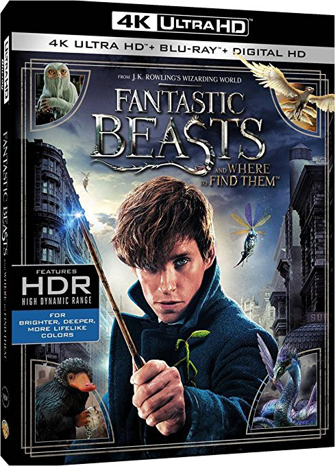 Fantastic Beasts and Where to Find Them –amerikansk omslag.