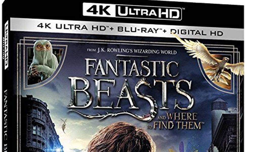 Fantastic Beasts and Where to Find Them kommer i en lang rekke varianter på videomarkedet. Utsnitt av amerikansk omslag.