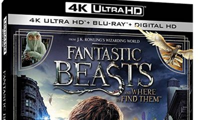 Fantastic Beasts and Where to Find Them kommer i en lang rekke varianter på videomarkedet. Utsnitt av amerikansk omslag.